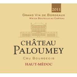 Magnum Château Paloumey 2011
