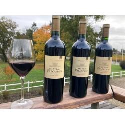 Vertical 6 wine-set of Château Paloumey