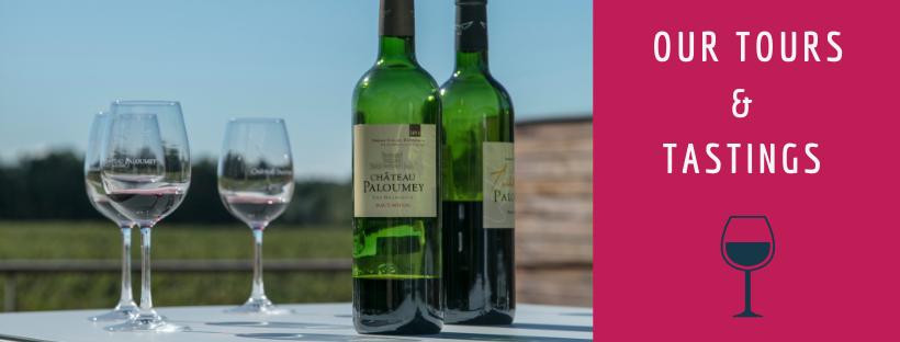 Wine tours and tastings at Château Paloumey