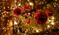 Découvrez nos offres Noël !